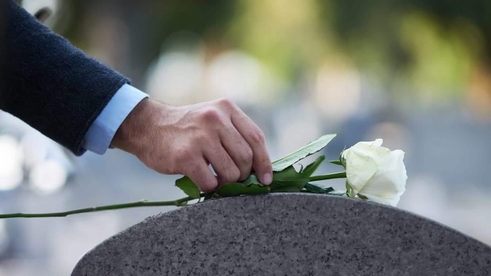 White Rose Gravestone Stock Photo